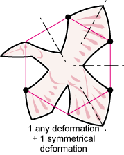 non-periodic symmetric birds
