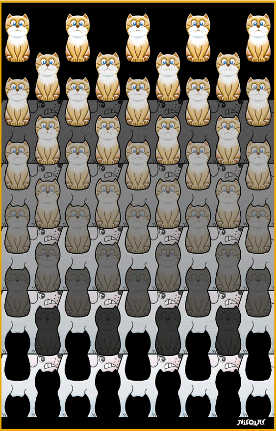 cats & dogs tessellation