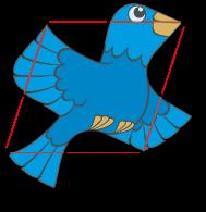 aperiodic birds