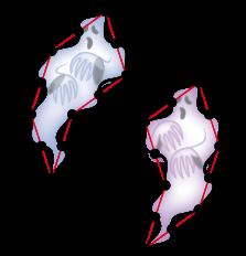 non-periodic ghost
