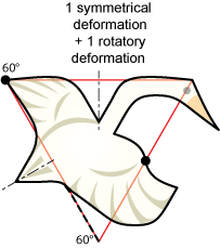 non-periodic goose tessellation