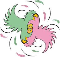 perroquets jaloux