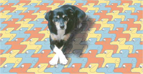 lucky dog tessellation
