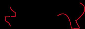 pavé oiseau rotation